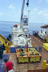4-Plex with artefacts safely recovered from 405m deep. © Odyssey Marine Exploration